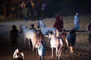 Bataille de Castillon 2016 - Réalisation Eric le Collen